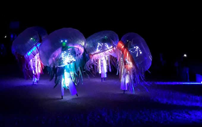 La danza delle meduse colorate nella Reggia di Venaria