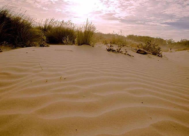 7 Risorse naturali che si stanno esaurendo: la sabbia