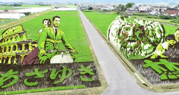 Arte Tanbo a Inakadate  l'arte di disegnare le risaie, Vacanze Romane