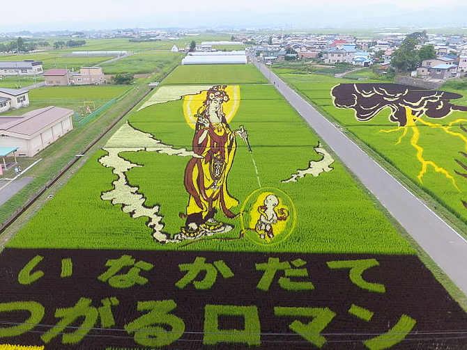 Arte Tanbo o arte della risaia, Paddy Art In Giappone