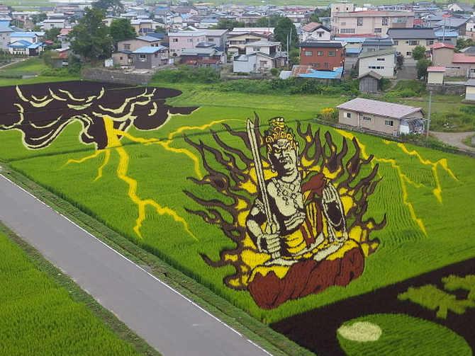 Arte Tanbo o arte della risaia, Inakadate, nella prefettura di Aomori Giappone