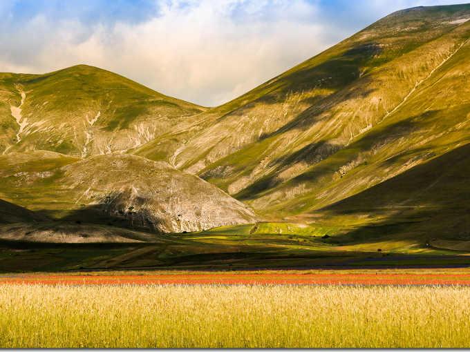 Fiorita (o Fioritura) di Castelluccio di Norcia   foto di Antonio Culicigno