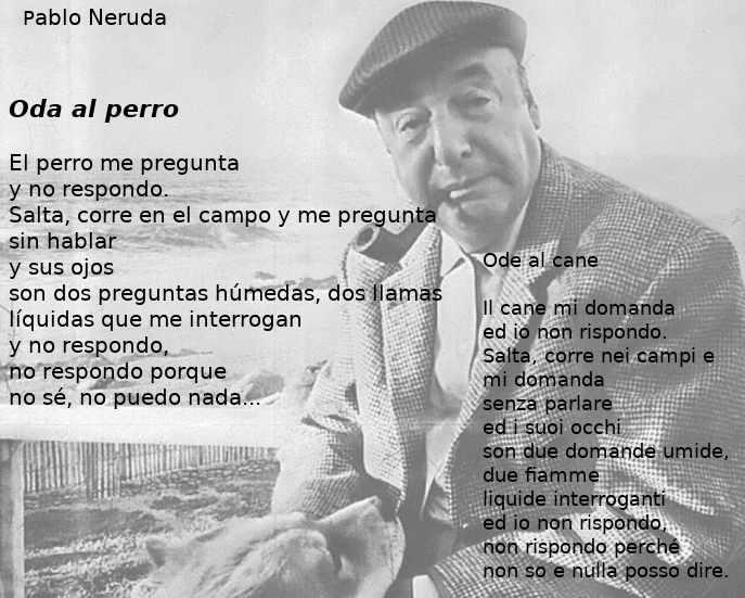 Ode al cane, Poesia sui cani di Pablo Neruda