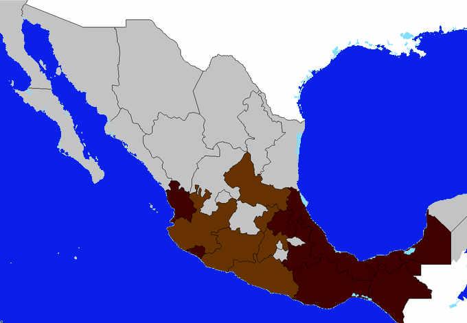 Le zone e le varietà del caffè in Messico