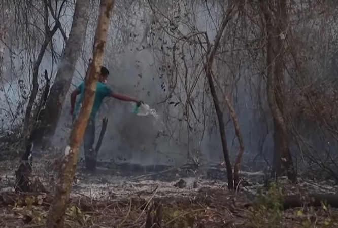 La lotta per impedire di deforestare l'Amazzonia