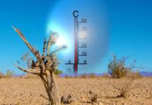 Cambiamenti Climatici: Per gli Scienziati l'Azione deve sostituire l'Impegno Verbale