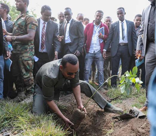 Sostenibilità Ecologica: Abiy Ahmed Ali mentre pianta un albero