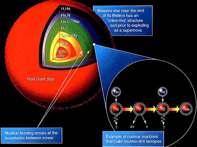 Sezione di una gigante rossa mostrante la nucleosintesi degli elementi