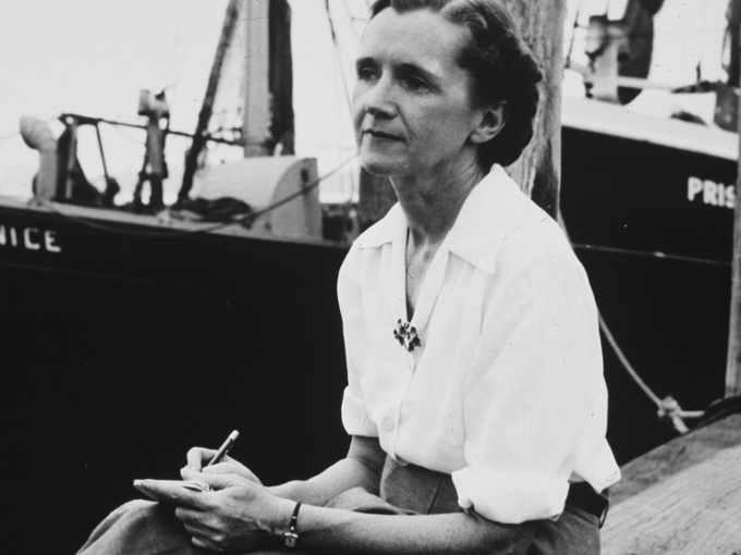 Rachel Carson e l'uso del DDT come pesticida