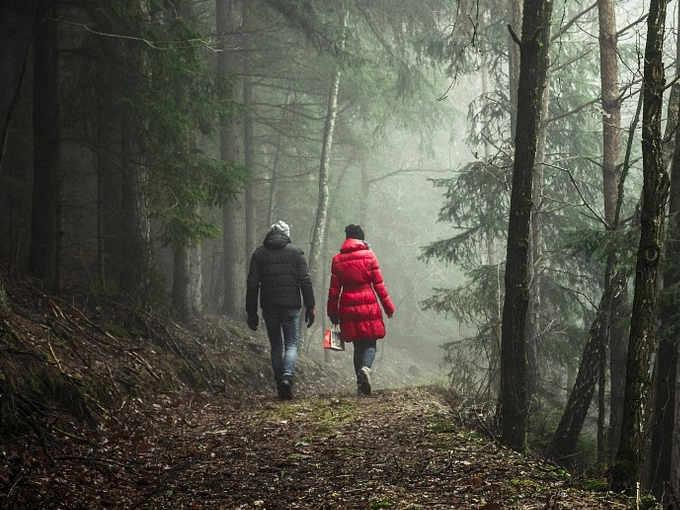 Le foreste: il nostro antivirus naturale