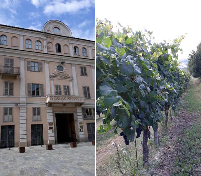 19 Nizza Monferrato