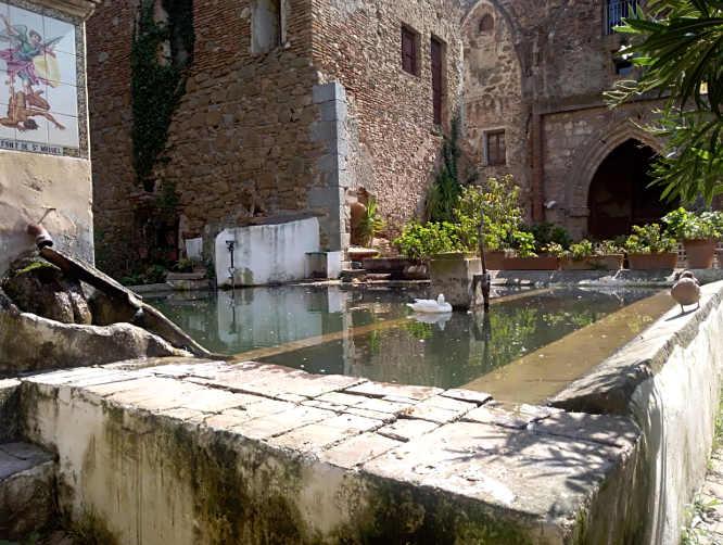 6 Sant Jeroni de la Murtra di Badalona