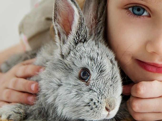 La terapia del coniglio, la Pet Therapy con i conigli