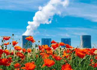 Ridurre le emissioni di CO2 passando da un campo di papaveri