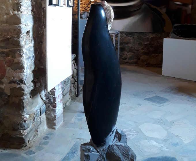 Sale San Giovanni, Galleria Camoroni