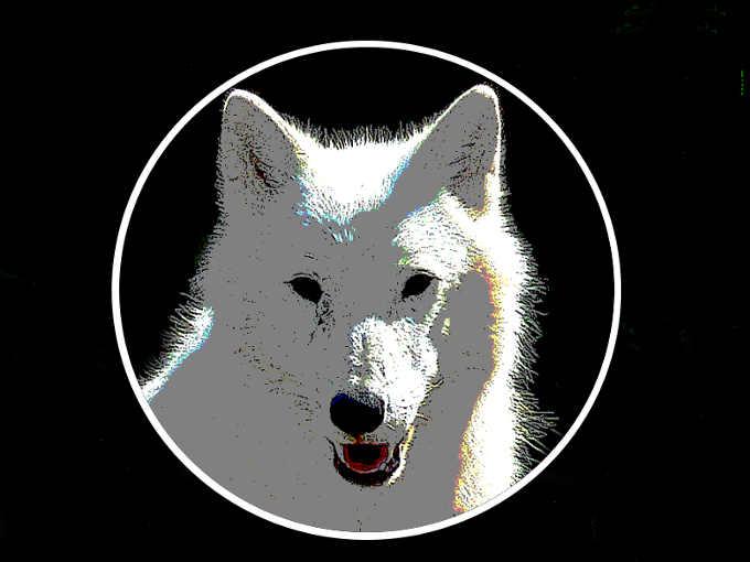 5 La setta del lupo oscuro