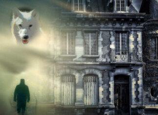 la setta del lupo oscuro